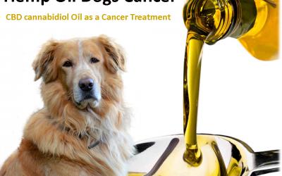 Hemp Oil Dogs Cancer